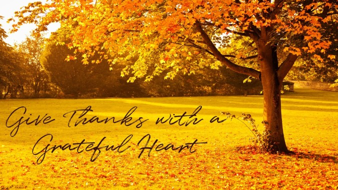 Grateful Heart day 77