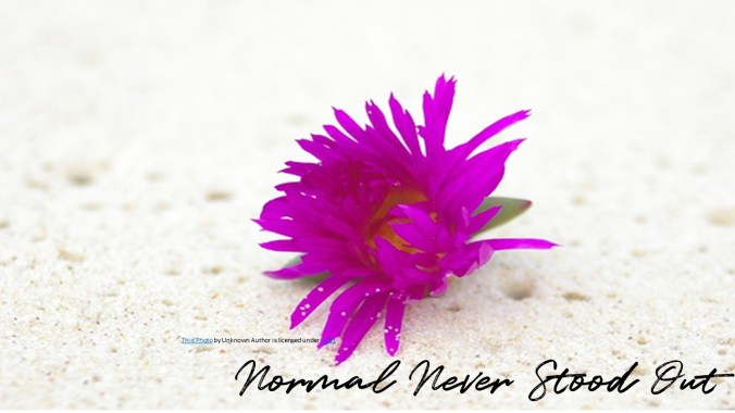 Normal Never Stood Out